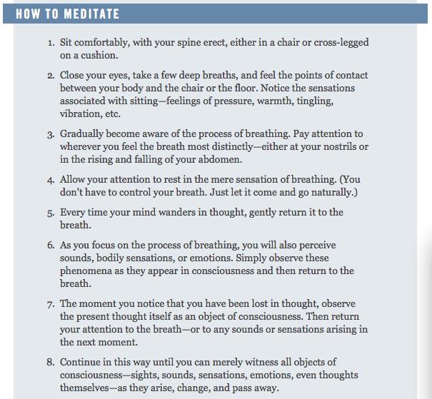 sam harris, meditation instructions
